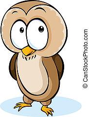 漂亮, 貓頭鷹, -, 被隔离, 插圖, 矢量, 背景, 白色, 卡通