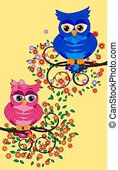 漂亮, 鮮艷, 坐, 屠夫, 樹, 三, 卡通, 有趣, flowers., 貓頭鷹, 背景。, 分支, 白色, 鳥