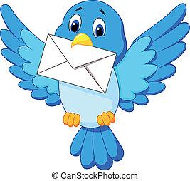 漂亮, 鳥, 卡通, 信, 交付