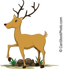 漂亮, 鹿, 卡通