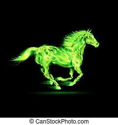 火, 綠色, horse.
