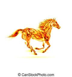 火, 跑, horse.