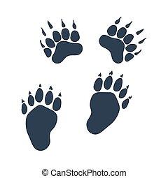 熊, 形跡, 圖象