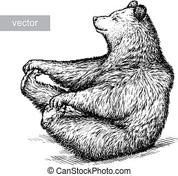 熊, 插圖, 刻記