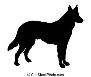 牧羊人, 黑色半面畫像, 狗, 黑色