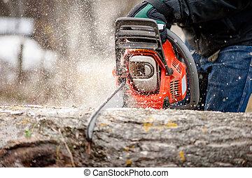 特寫鏡頭, 花園, 樹, chainsaw, 切, 森林, 工具, 或者, 人