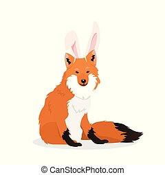 狐狸, bunny耳朵