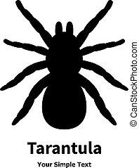 狼蛛, 矢量, 黑色, 蜘蛛, 插圖