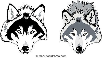 狼, 矢量, 頭