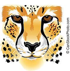 獵豹, 臉