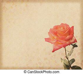 玫瑰, 設計, grunge