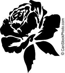 玫瑰, 黑色