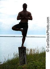 瑜伽, 黑色半面畫像, 殘干, 人, 自然
