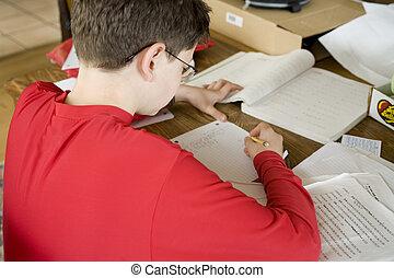 男孩, 數學, 家庭作業