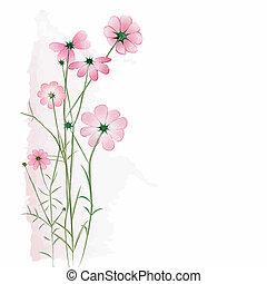 白色的花儿, 背景, 春天, 鮮艷