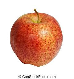 白色, 蘋果, 背景, 被隔离