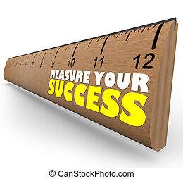 目標, 統治者, 回顧, 評估, 成長, 措施, 進展, 你