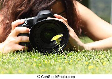 相片, 花, 拿, 向上, 相當, 關閉, 女孩, 草