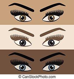 眉毛, 眼睛, 集合, 鞭子, 圖象, 顏色, 向上, 長, 不同, 看, 皮膚, 對, 關閉, 婦女