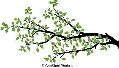 矢量, 樹, 黑色半面畫像, 分支, 圖像