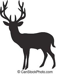 矢量, 鹿