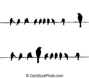 矢量, 黑色半面畫像, 電線, 鳥