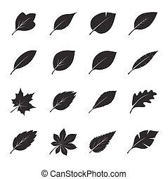 矢量, leafs., 集合, 黑色, illustration.