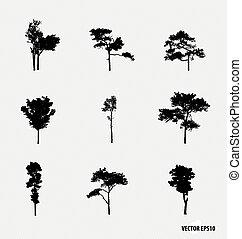 矢量, silhouettes., 集合, 樹, illustration.