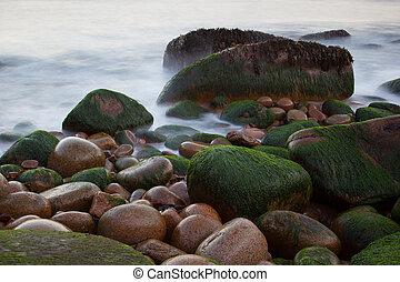 石頭, 緬因, 懸崖, 美國, 國家, 海岸, 公園, acadia, 水, 被模糊不清, 水獺