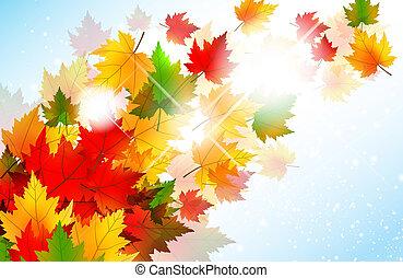 秋天, 震動, 葉子, 楓樹, 背景