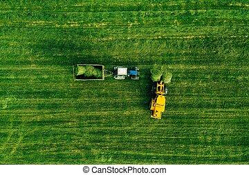 空中, 領域, 包, 干草, 移動, 收穫, 拖拉机, 看法