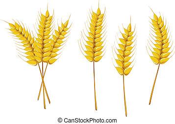 符號, 農業