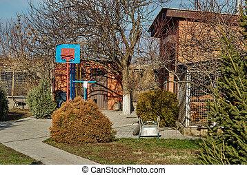 籃球, 舒適, 區域, 箍, 後院, 院子