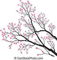粉紅色, 樹, 花, 分支