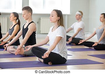 組, 運動, 人們, 姿態, 年輕, sukhasana