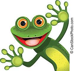 綠色, 歡樂, 青蛙