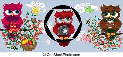 編織, 風格, 分支, 旗幟, 鮮艷, 咖啡, 屠夫, 三, 花, 貓頭鷹, 明亮, 照像機, 假期, 旗, 卡通, 明信片