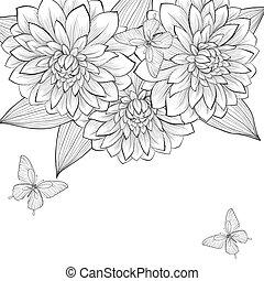 美麗, 框架, 蝴蝶, 黑色的背景, 單色, 大麗花, 懷特花