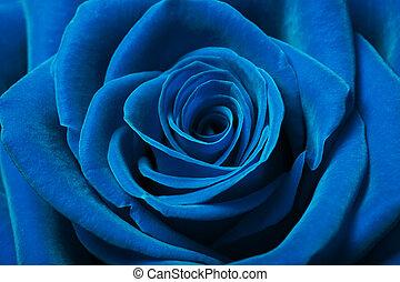 美麗, 藍色, 上升