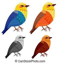 美麗, 設計, 鳥, 彙整, 你
