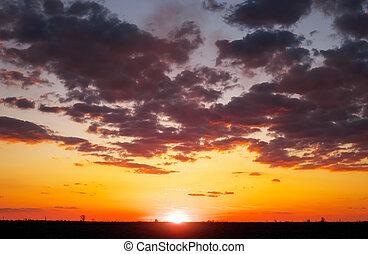 美麗, 鮮艷, 天空, sunrise., 傍晚, 在期間, 或者