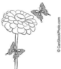 美麗, butterflies., 黑白, 花