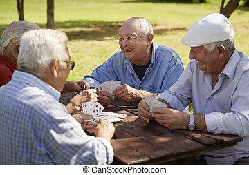 老, 前輩, 公園, 活躍, 卡片, 組, 朋友, 玩