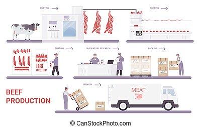 肉, 過程, 工廠, 牛肉, 生產, infographic