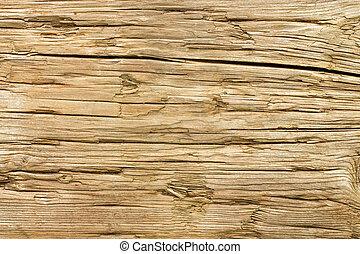 背景。, 木頭, 老, 風化, 結構