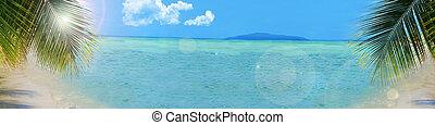 背景, 熱帶的海灘, 旗幟