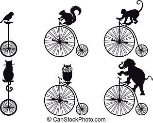 自行車, 矢量, 動物, retro
