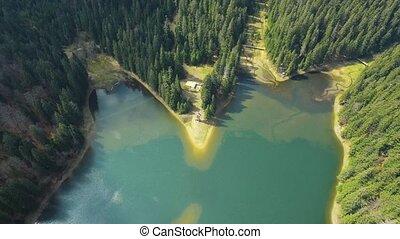 航空的射, 湖森林