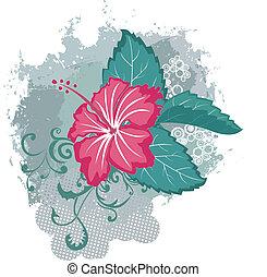 芙蓉屬的植物, 矢量, grunge, 花