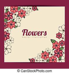 花, 框架